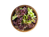 Young lettuce leaves in wooden bowl. Top view. Lettuce isolated on a white background. Purple lettuce with copy space for text.