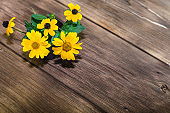Floral background. Yellow bright garden flowers in a ceramic cup on a wooden background in a rustic style with a copy space.