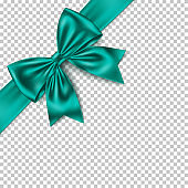 Realistic green gift bow and ribbon isolated on transparent background.