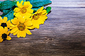 Floral natural festive background for congratulations. Bouquet of yellow bright garden flowers on a wooden background in a rustic style with copy space.