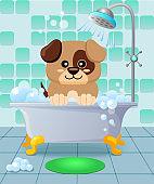 Cute puppy taking bath. Dog grooming