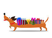 Cute cartoon long dachshund carrying gift boxes on the back