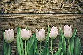 Pink tulips, floral arrangement on wooden background