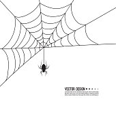 Vector illustration of creepy spider web