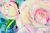 Watercolor painting pink yellow color of roses