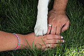 Close up of married couple holding hands with engagement rings on and their siberian husky dog's paw over juicy green grass. Team work concept. Man, woman & pet. Background, top view, copy space.