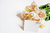 Beautiful spring holidays flowers arrangment. Bunch of white tulips in festive composition, copy space for text, white background.