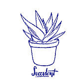 Succulent vector lineart illustration with hand drawn lettering Succulent for poster, banner, logo, icon, website, fashion print.
