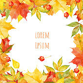 Hand drawn watercolor autumnal leaves and berries design template