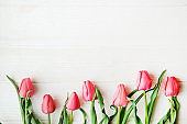 Bunch of pink tulip in beautiful spring holidays composition lying on white wooden textured table background. Mother's day bouquet arrangement. Flowers for women's day. Copy space, close up, top view.