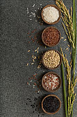 Variation of rice bowls with rice paddy stem background