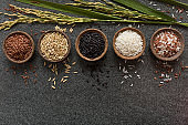 Variation of bowls of different rice with rice paddy stem