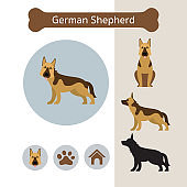 German Shepherd Dog Breed Infographic