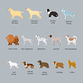 Dog Breeds Set, Large and Medium Size