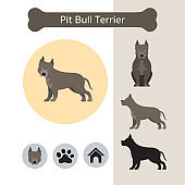 Pit Bull Terrier Dog Breed Infographic