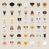 Dog Breeds, Head Set