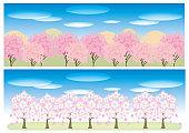 Cherry blossom trees Banner set