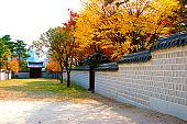 경복궁,담장,담벽,단풍,가을