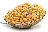Soybean on white background