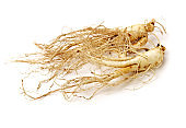 Ginseng Root on a white background