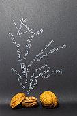 Mathematics in a nutshell
