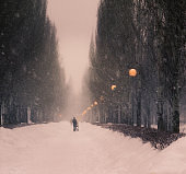Winter.Snowfall in the city.