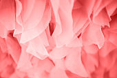 Chiffon pastel textile texture.