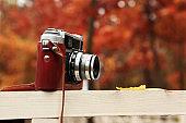 retro camera in autumn leaves