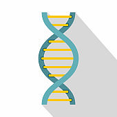 DNA symbol icon, flat style
