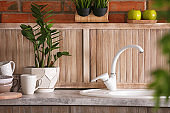 Stylish sink and faucet in modern kitchen. Idea for home design