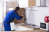 Pest Control Worker Spraying Pesticide In Kitchen