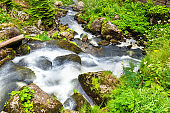 Triberg Falls, one of the highest waterfalls in Germany