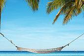 Tropical beach hammock relaxation