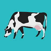 White and black cow with flat and solid color design.