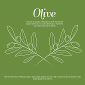 Olive branch with trendy line art style. Contour line drawing vector.
