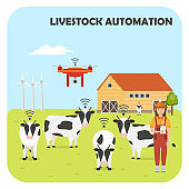 Smart farming. Robot shepherd. Livestock automation