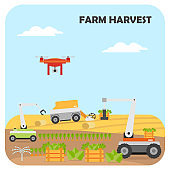 Smart farming harvest. Agricultural automation and robotics