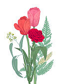 Bouquet of flowers and greenery: red, pink, yellow carnation, tulips, green leaves fern, eucalyptus on white background for Mother's Day, hand draw, engraving vintage sketch style, botanical vector
