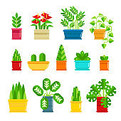Set of houseplants vector icons in flat design. Various plants collection in flowerpots isolated on white background. Indoor plants icons and infographic elements - stock vector illustration.