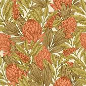 Floral seamless pattern. Protea vintage background.  illustration