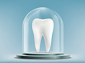 White human tooth under the glass dome.