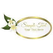 Tropical frame floral summer leaf aloha design