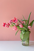 Pink tulips in glass jar