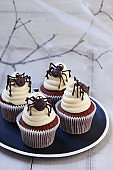 Halloween cupcakes with chocolate spiders in black plate