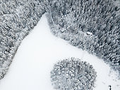 Winter aerial views in snowy forest and frozen lake in Nuuksio National park, Finland