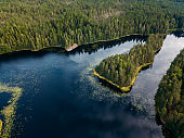 Aerial view of blue lakes and green forests on a sunny summer day in Finland