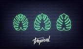 Neon tropical palm leaves. Glowing sign of monstera exotic leaves