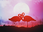 romantic flamingos in the grass field meadow