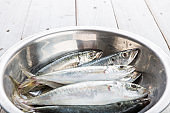 Fresh mackerel fish in metal bowl