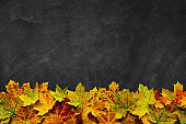 Black stone background with autumn leaves